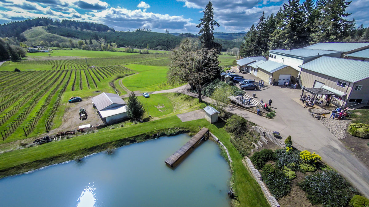 Aerial view of Airlie Winery